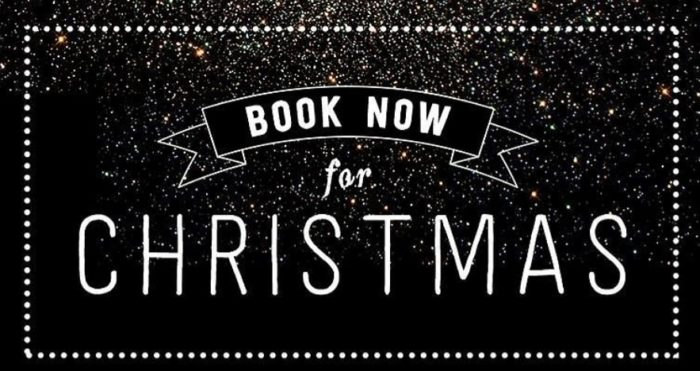 Christmas Beauty Appointments.Christmas Appointmnents The Beauty Establishment The